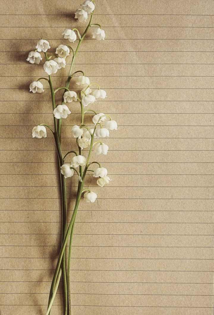 Poet of The Week: AlysiaHarris